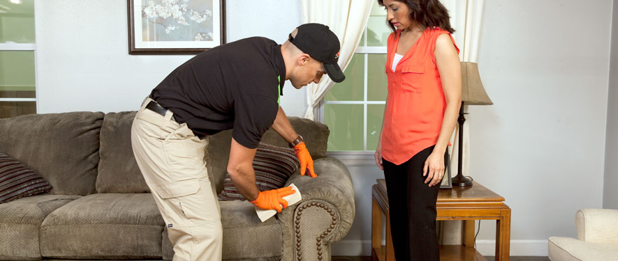 Hagerstown, MD carpet upholstery cleaning